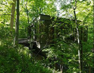 I love the wooded setting - a treehouse. Perfect.